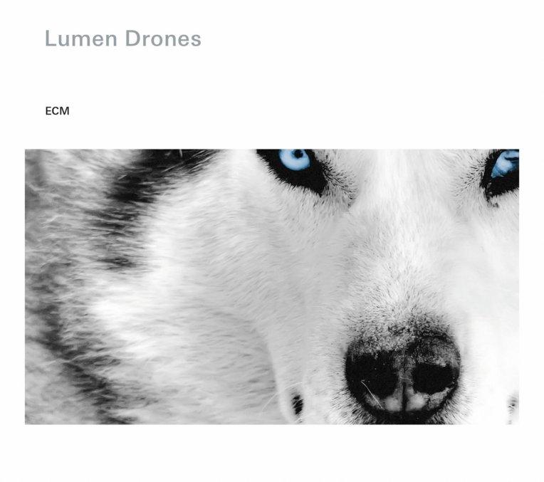 Lumen Drones